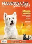 Edição 33 - Dezembro de 2010