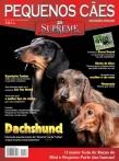 Edição 14 - Outubro de 2007