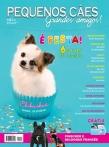 Edição 35 - Abril de 2011