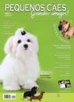 Edição 36 - Junho de 2011