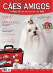 Edição 44 - Outubro de 2012