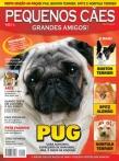 Edição 19 - Agosto de 2008