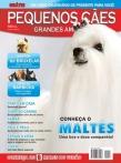 Edição 21 - Dezembro de 2008