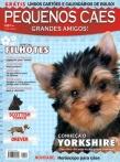 Edição 22 - Fevereiro de 2009