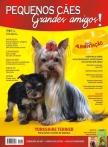 Edição 40 - Fevereiro de 2012