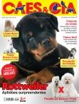 Edição 417 - Março/2014