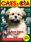 Edição 420 - Junho/2014