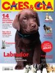 Edição 428 - Fevereiro/2015