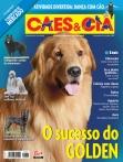 Edição 384