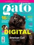 Edição 113 - Maio de 2017 - Digital