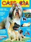 Edição 262 - Março/2001