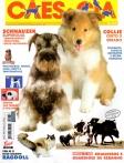 Edição 274 - Março/2002