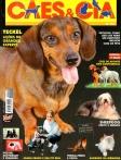 Edição 294 - Novembro/2003
