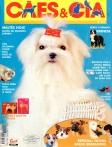 Edição 293 - Outubro/2003