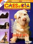 Edição 329 - Outubro/2006
