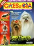 Edição 335 - Abril/2007