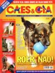 Edição 337 - Junho/2007