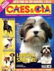 Edição 338 - Julho/2007