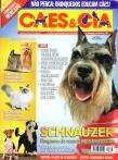 Edição 333 - Fevereiro/2007