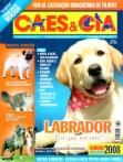 Edição 344 - Janeiro/2008