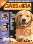 Edição 347 - Abril/2008