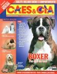 Edição 348 - Maio/2008