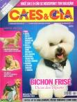 Edição 341 - Outubro/2007