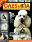 Edição 342 - Novembro/2007