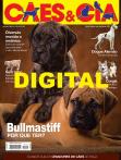 Edição 445 - Julho/2016 - Digital
