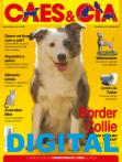 Edição 441 - Março/2016 - Digital