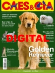 Edição 454 - Abril/2017 - Digital