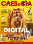 Edição 456 - Junho/2017 - Digital