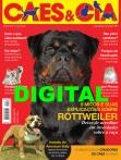 Edição 459 - Setembro/2017 - Digital
