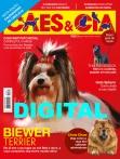 Edição 462 - Dezembro/2017 - Digital
