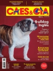 Edição 489 - Bulldog Inglês