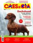 Edição 492 - Especial Dachshund - Agosto/Setembro 2021- Digital