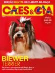 Edição 462 - Dezembro/2017 - Biewer Terrier