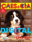 Edição 475 - Fevereiro/2019 - Bernese - Digital