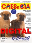 Edição 473 - Dezembro/2018 - Bullmastiff - Digital