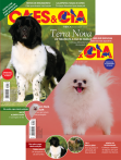 Edição 478 - Maio/2019 - Terra Nova/Spitz