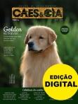 Edição 482 - Outubro/2019 - Edição de Colecionador - Digital