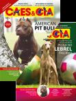 Edição 484 - Dezembro/2019 - Pequeno Lebrel Italiano & American Pit Bull