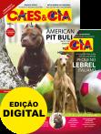 Edição 484 - Dezembro/2019 - Pequeno Lebrel Italiano & American Pit Bull - Digital