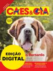 Edição 488 - São Bernardo - Digital