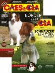 Edição 483 - Novembro/2019 - Schnauzer Miniatura & Border Collie