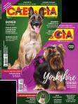 Edição 481 - Setembro/2019 - Yorkshire/Pastor Belga Malinois