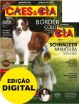 Edição 483 - Novembro/2019 - Schnauzer Miniatura & Border Collie - Digital