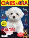 Edição 432 - Junho/2015