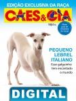 Edição 472 - Novembro/2018 - Exclusiva Pequeno Lebrel Italiano