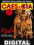 Edição 471 - Outubro/2018 - Exclusiva Vizsla